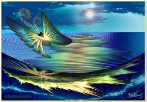 бабочка и море