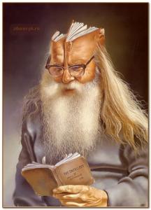 книга и голова книга
