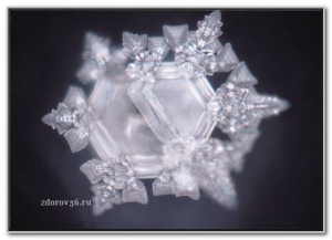 кристал зам