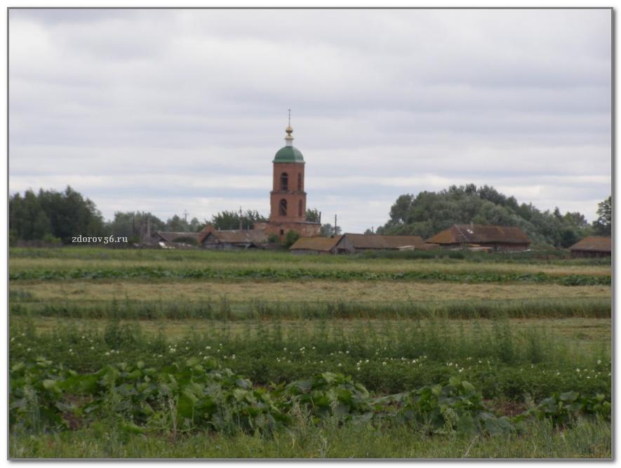 село съезжее самарской области фото толстушки выглядят
