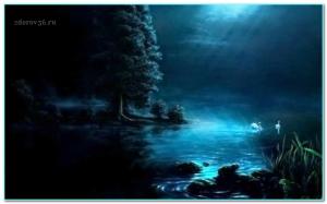 ночь и озеро